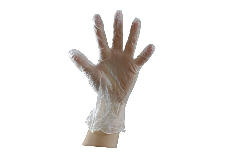 01 Powder free vinyl large gloves