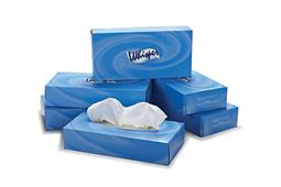1. White 2 ply facial tissue 100 sheets